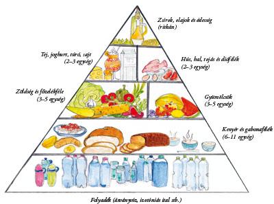 Megfelelő táplálkozás sportolóknak | TermészetGyógyász Magazin